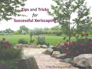 Tips & Tricks for Xeriscaping Free Ebook