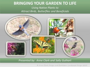 Bringing Your Garden to Life 1